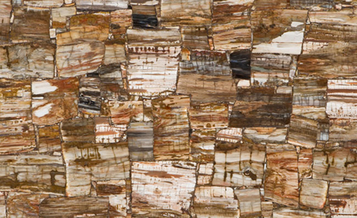 petrified_wood_retro